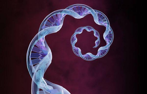 Family history and hematologic malignancies